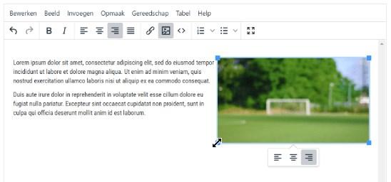 Een handige tekstverwerking tool om bijvoorbeeld te verwijzen naar een wedstrijdverslag. Het werkt zo simpel als Microsoft Word.